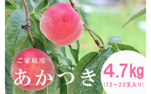 No.0853 【先行予約】 もも「あかつき」ご家庭用4.7㎏(12~22玉入り)
