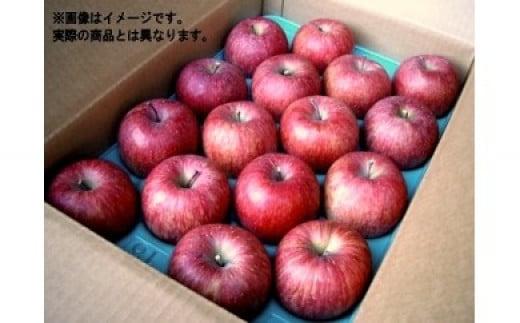 No.0028 【フルーツ王国福島市からお届け】りんご「サンフジ」5kg(特秀14~18玉)