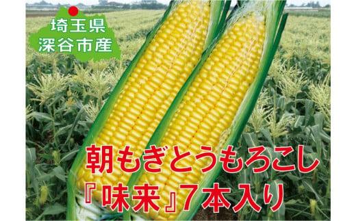 【6・7月出荷】フルーツみたいなスイートコーン【味来(みらい)】7本 【11218-0139】