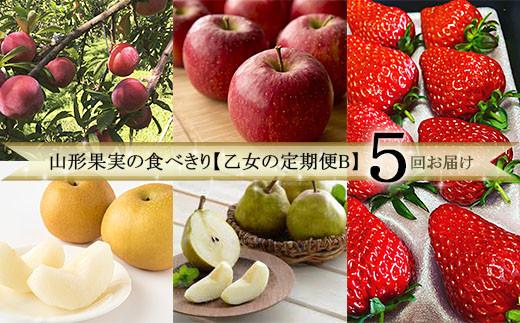 FY20-305 【定期便5回】山形果実の食べきり【乙女の定期便B】