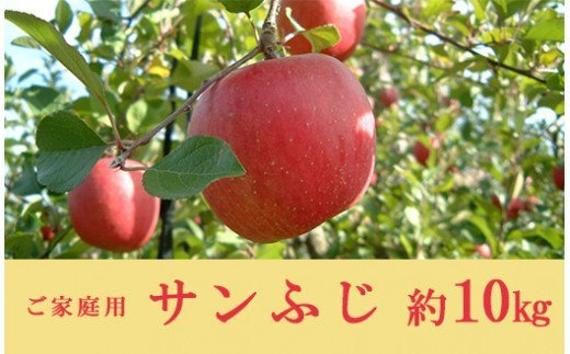 No.0154 りんご(サンふじ)家庭用(約10kg)