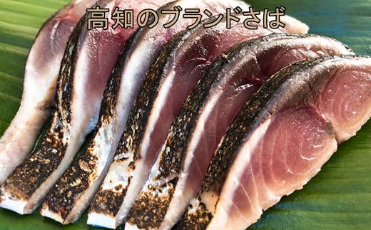 【L-34】土佐の清水さば獲れたて〆鯖の炙り2枚セット