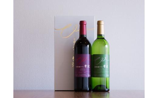 1027自園自醸ワイン紫波 辛口ワイン2本セット