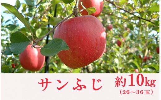 No.0153 りんご(サンふじ)(約10kg)