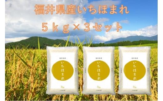 1163 【11月発送分】福井が生んだブランド米「令和2年福井県産いちほまれ」5kg×3