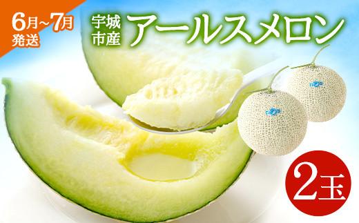 【6月~7月発送】宇城市産 アールスメロン 2玉(3kg以上)