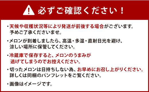熊本県産 アールスメロン 2玉 (1玉1.7kg~2.2kg)