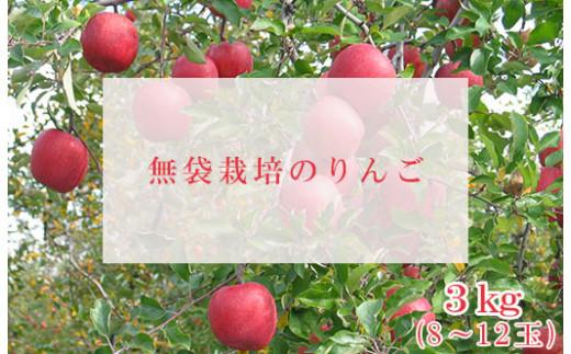 No.0145 りんご(約3kg)