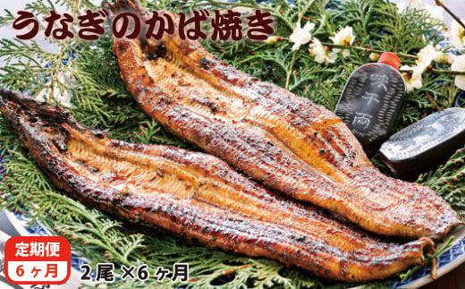 【6ヶ月定期便】藤うなぎ かば焼き 2尾<10-9>