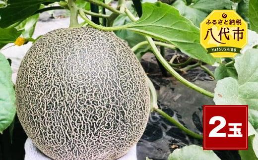 熊本県産 肥後グリーン メロン 2玉(1玉2kg~2.4kg)