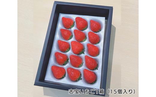 No.107 志宝いちご1箱(15個入り) / イチゴ とちおとめ 特産品 石川県