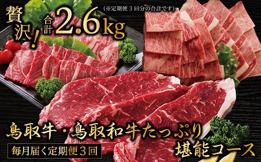 TT01:【定期便】鳥取牛&鳥取和牛堪能♪焼肉コース(3回お届け)