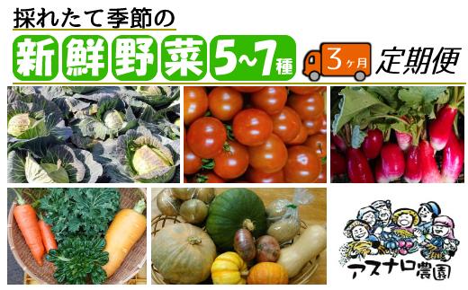 AL014 【毎月定期便3回】採れたて新鮮!自然栽培の季節の野菜 5~7種