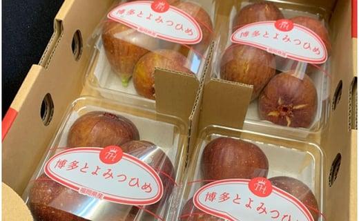 福岡県産「とよみつひめ」いちじく 約200~300g詰 × 4パック