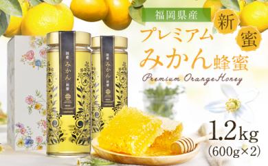 【新蜜】プレミアム みかん蜂蜜 1.2kg(600g×2本)国産 はちみつ