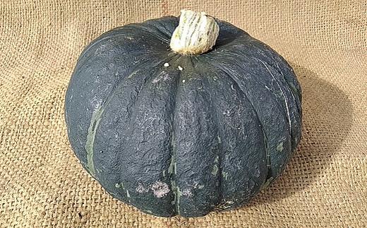 【先行予約】北海道栗山町産 ほくほくかぼちゃ 2玉 02_YA022
