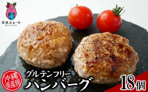 沖縄県産豚グルテンフリーハンバーグ18個