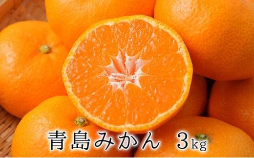 [№5550-0585]甘さと酸味がマッチ 青島みかん3kg【2021年1月上旬以降お届け】