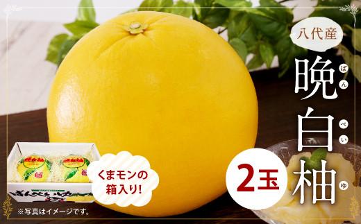 八代産 晩白柚2玉(くまモンの箱入り)柑橘 ばんぺいゆ
