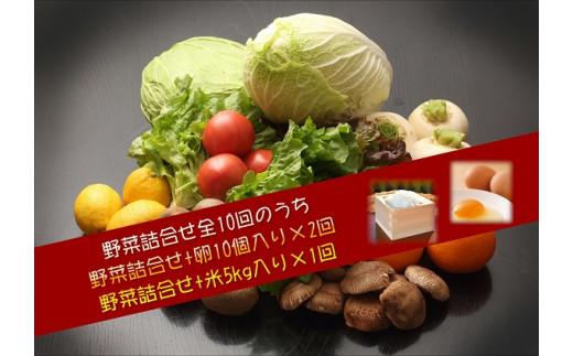【I0-005】季節の野菜詰め合わせの定期便10回(下旬)