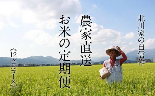 【定期便】(12ヶ月連続お届け)  北川農産直送、お米の定期便(5kg×12回)