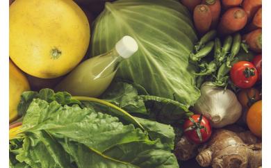 『定期便 全12回』無農薬生姜500gと旬の野菜の詰め合わせ【土佐野菜】