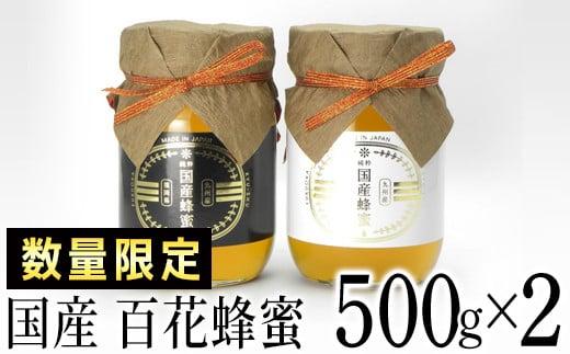 【数量限定】国産蜂蜜ギフト 500g×2本・02-AA-2601