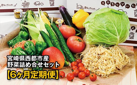 【先行予約・6ヶ月定期便】西都市旬の特産詰め合わせセット 野菜・マンゴー・スイートコーン等<6-14>