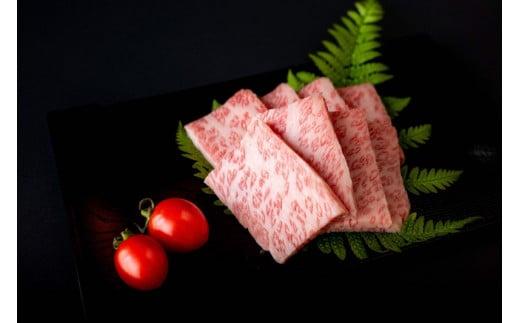 【数量限定】宮崎黒毛和牛<JAこゆ牛>カルビ肉 500g【B244】