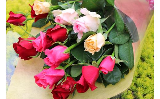 [№5672-0391]【約15本】生産者直送 有機栽培で育った朝切りバラの花束