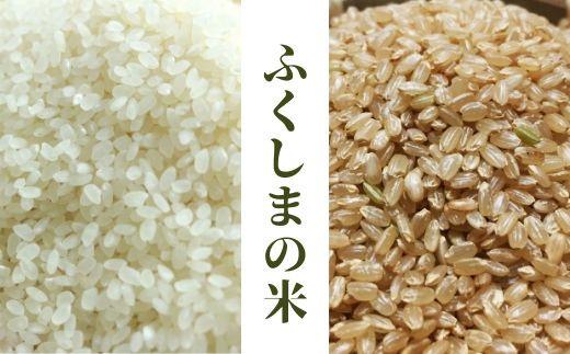 No.0531 こしひかり精米&玄米詰め合わせ20kg(5kg×4袋)