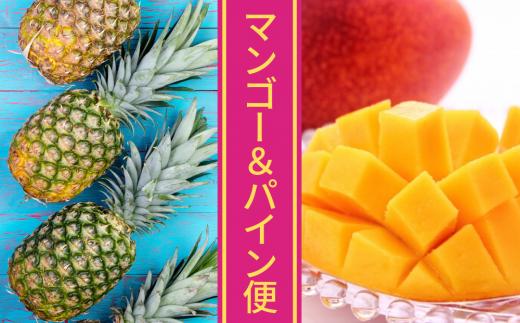 沖縄2大フルーツ!マンゴー&パイン便【2021年7月発送】