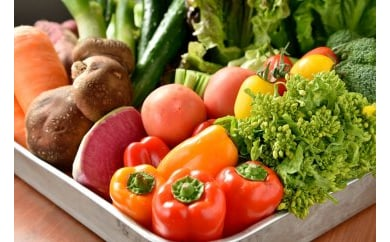 【有機JAS認定オーガニック】シェフの目線「大洲の旬野菜詰合せ」