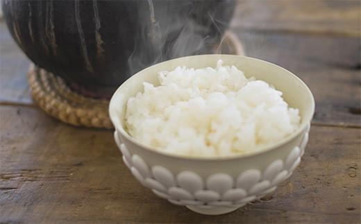 【南九州豪雨災害支援】令和2年度産 自然栽培米 稲本1号 白米 10kg