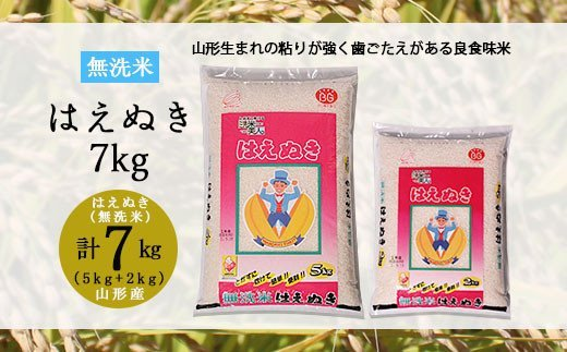 FY19-418  [令和2年産]山形産はえぬき【無洗米】7kg(5kg・2kg)