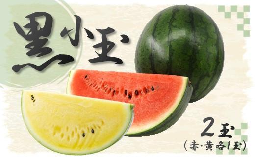 <先行予約受付>C5 黒小玉スイカ(赤色・黄色)熊本和水町産