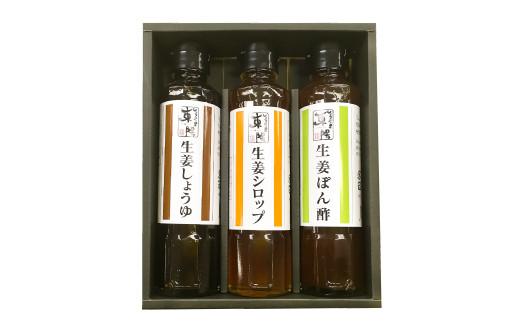 しょうがの里東陽 生姜を使った調味料 3本セット