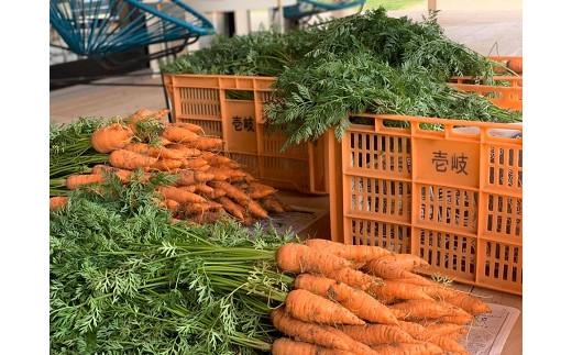 並べられた野菜はどれも愛情を込めて育てられた自家製です!