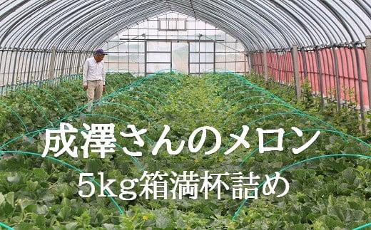 【令和3年産先行予約】成澤さんのメロン(5kg箱満杯詰め)