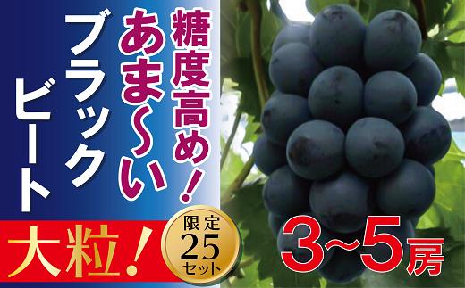 DD-43 岡山のあまーいブラックビート約2kg(3~5房)