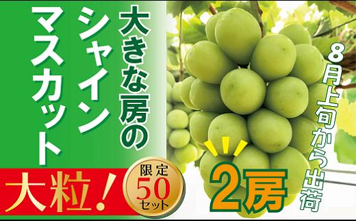 ZZ-8 岡山のあま~い「シャインマスカット」 2房(大房)
