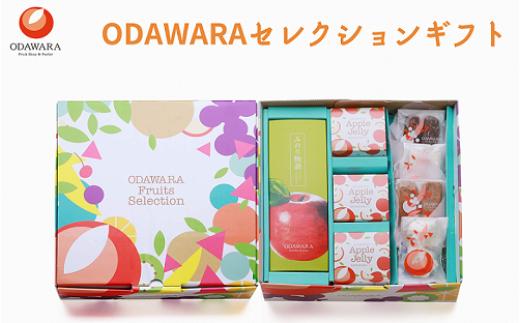 ODAWARAセレクションBOX ゼリー×3 ケーキ×5 焼き菓子 4種