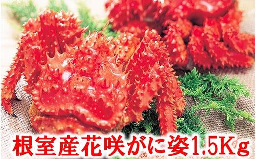 C-01023 【北海道根室産】花咲がに姿1.5kg×1尾