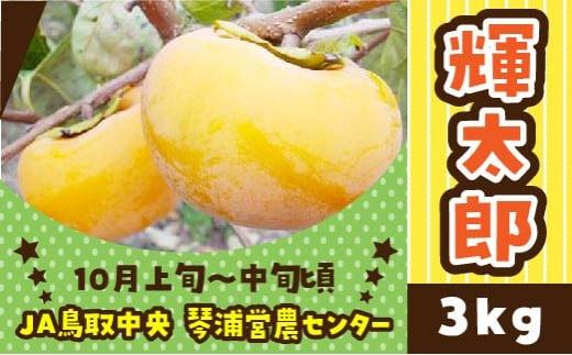 46.輝太郎(きたろう)