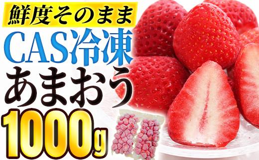 CAS冷凍あまおう(500g×2パック)・02-AA-2904