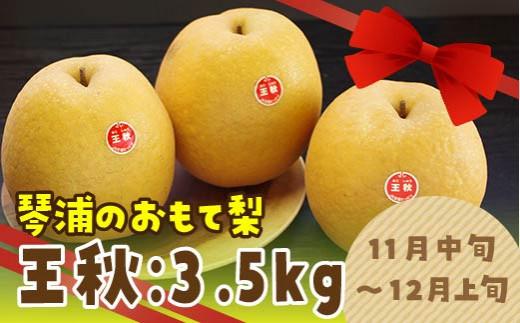 45.王秋(おうしゅう)