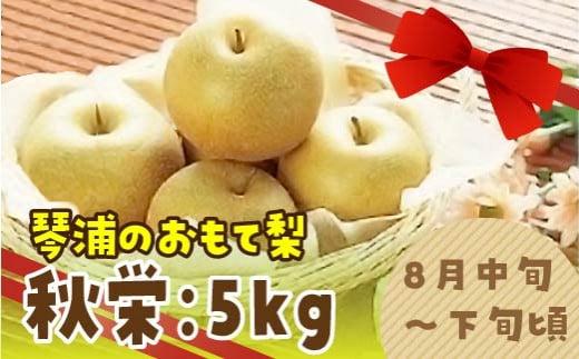 168.秋栄(あきばえ)