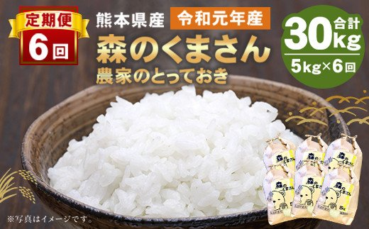 【定期便6回】熊本県産 森のくまさん 5kg(計30kg)精米 白米