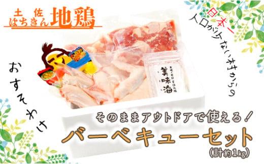 大川村土佐はちきん地鶏バーベキューセット【日本一人口の少ない村】