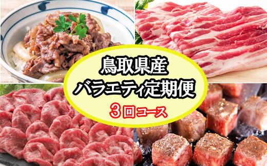 TT03:【定期便】鳥取県産牛バラエティ定期便(3回お届け)